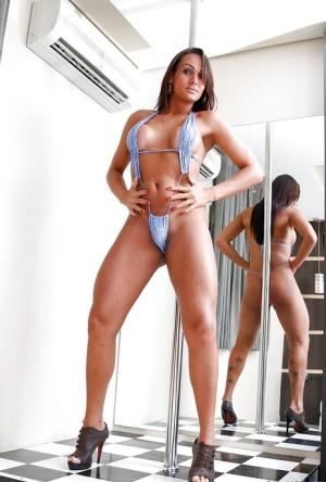 Bikini Shemales Pics